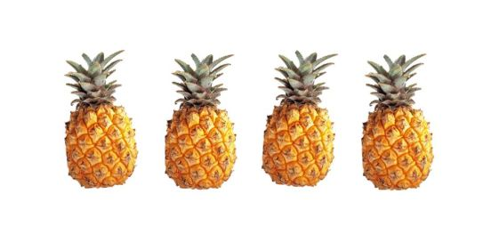 tumblr_static_tumblr_static_tumblr_static_tumblr_static_pineapple (1)